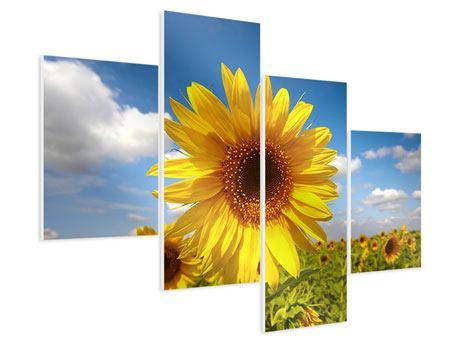 Hartschaumbild 4-teilig modern Das Feld der Sonnenblumen