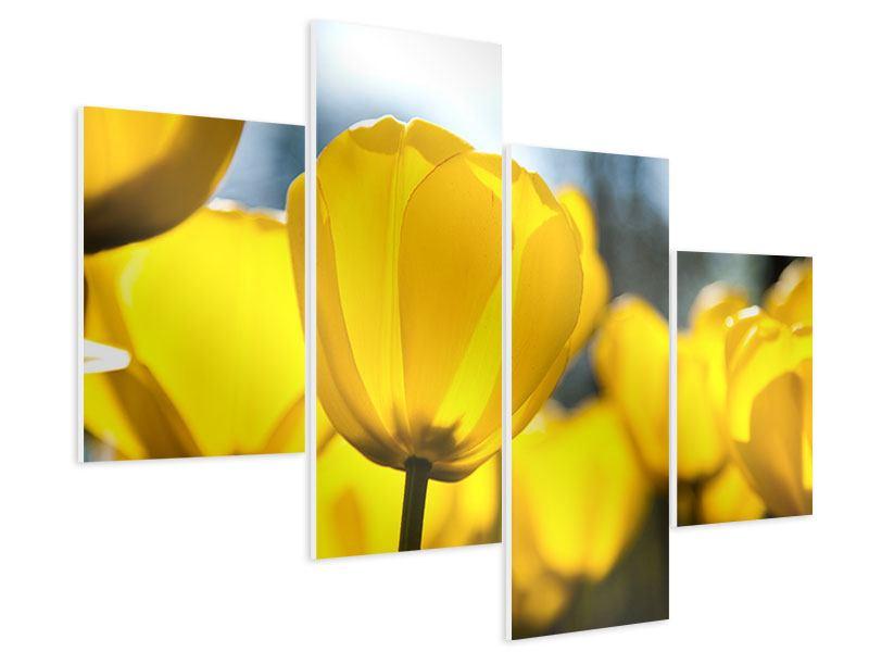 Hartschaumbild 4-teilig modern Gelbe Tulpen in XXL