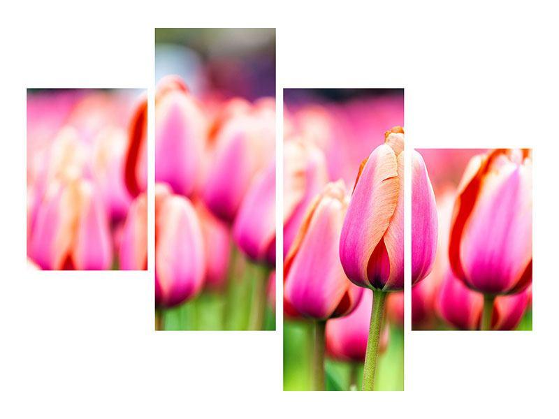 Hartschaumbild 4-teilig modern Pretty in Pink