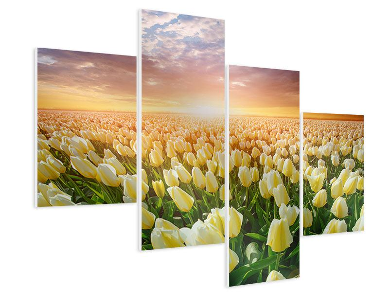 Hartschaumbild 4-teilig modern Sonnenaufgang bei den Tulpen