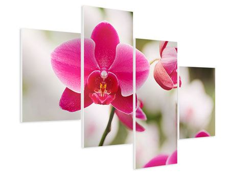 Hartschaumbild 4-teilig modern Perspektivische Orchideen
