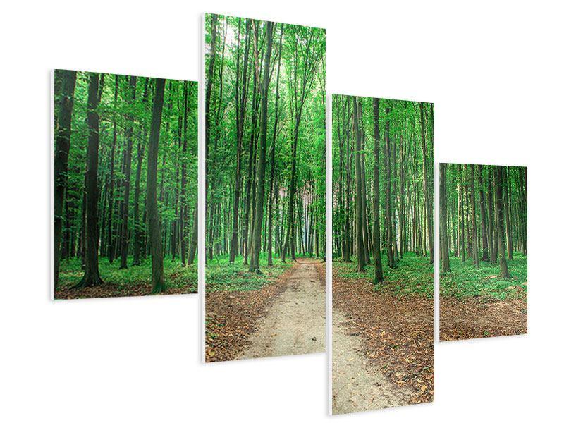 Hartschaumbild 4-teilig modern Tannenwald
