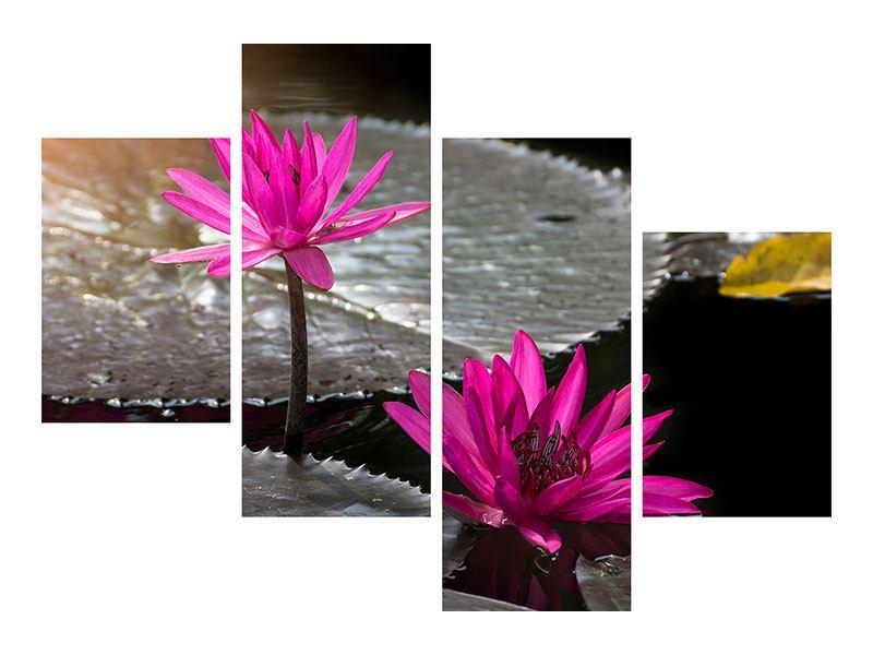 Hartschaumbild 4-teilig modern Seerosen im Morgentau