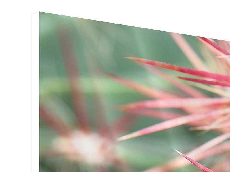 Hartschaumbild 4-teilig modern Die Kaktusblüte