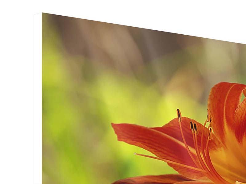Hartschaumbild 4-teilig modern Lilien in der Natur