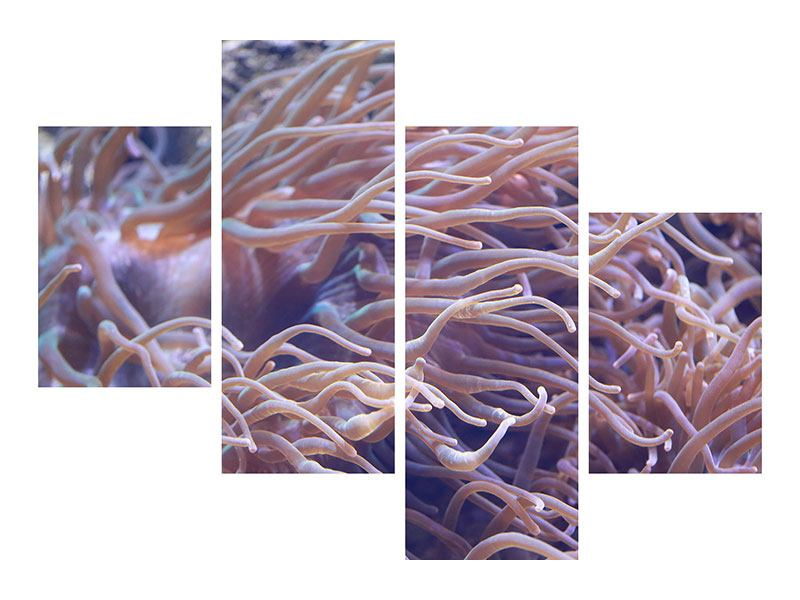 Hartschaumbild 4-teilig modern Korallenriff