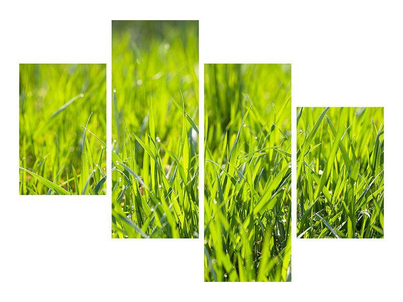 Hartschaumbild 4-teilig modern Gras im Morgentau