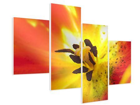 Hartschaumbild 4-teilig modern Die Narbe einer Tulpe XXL