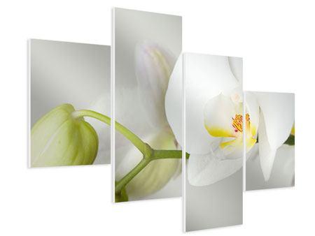 Hartschaumbild 4-teilig modern Riesenorchidee