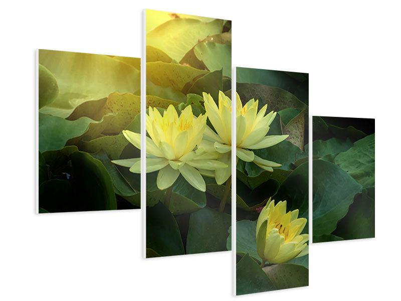 Hartschaumbild 4-teilig modern Wilde Lotus