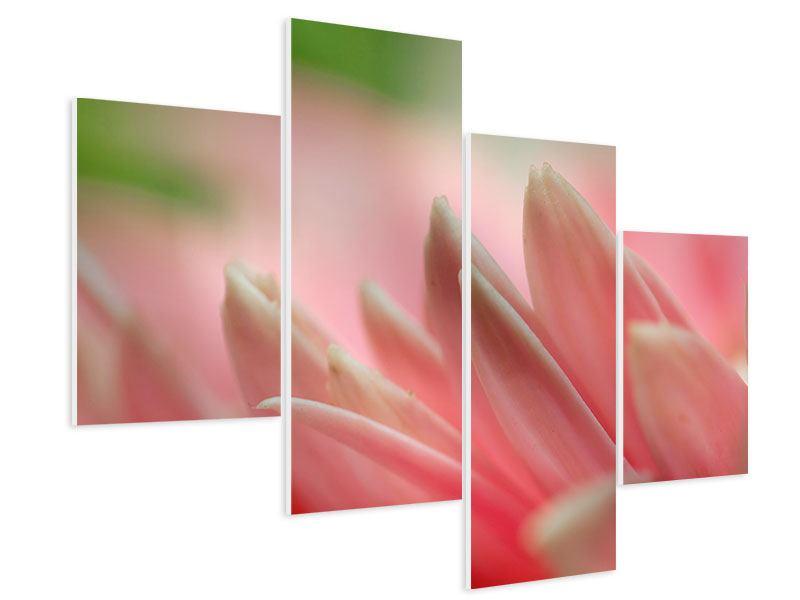 Hartschaumbild 4-teilig modern Close Up einer Blüte