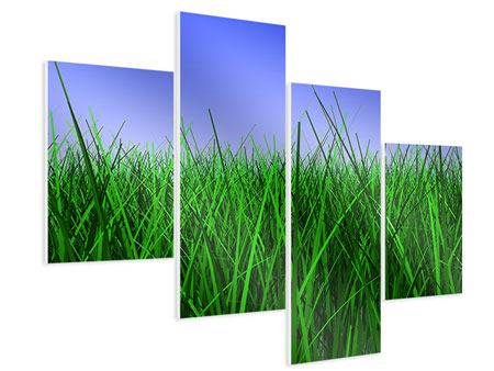 Hartschaumbild 4-teilig modern Im Gras