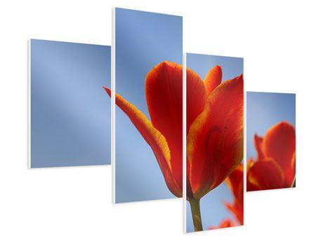 Hartschaumbild 4-teilig modern Rote Tulpen in XXL