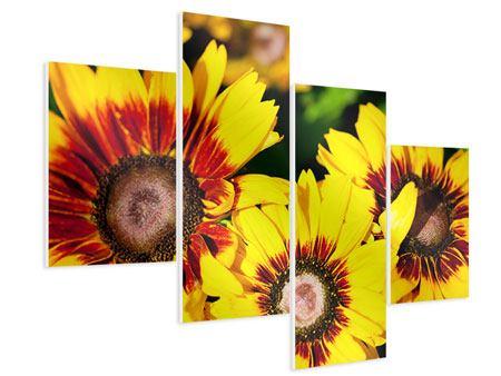 Hartschaumbild 4-teilig modern Reife Sonnenblumen