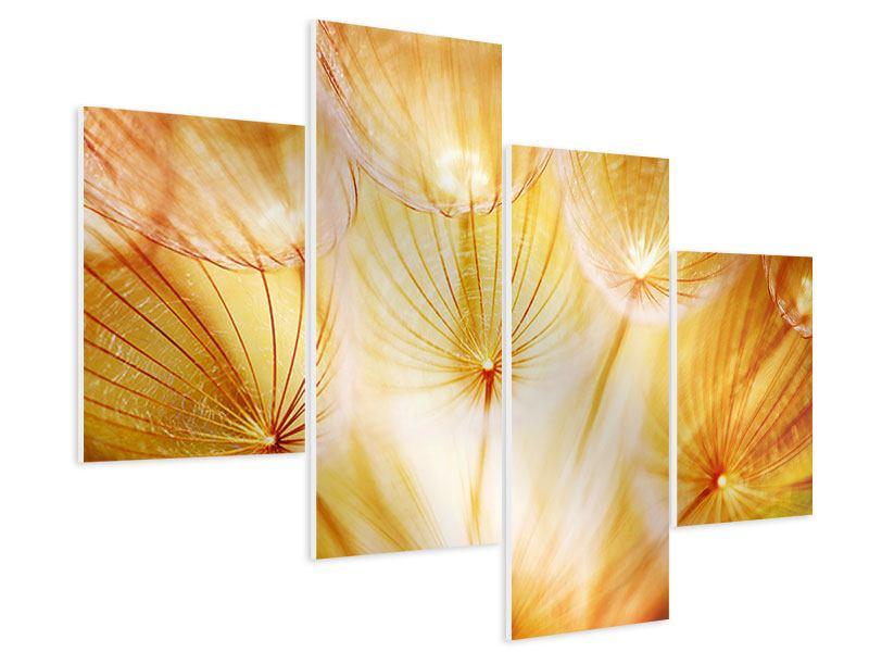 Hartschaumbild 4-teilig modern Close Up Pusteblume im Licht
