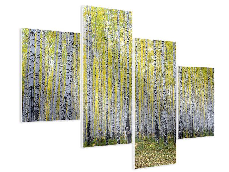 Hartschaumbild 4-teilig modern Herbstlicher Birkenwald