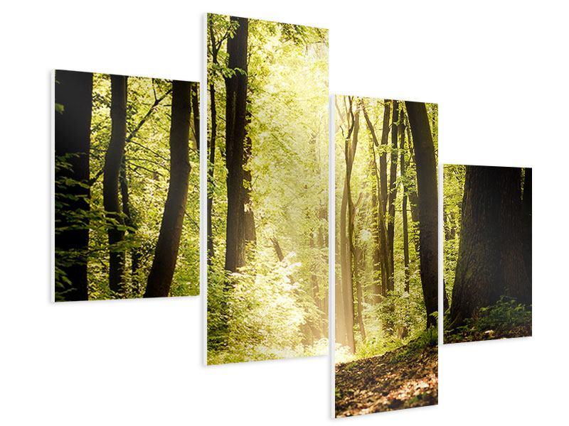 Hartschaumbild 4-teilig modern Sonnenaufgang im Wald