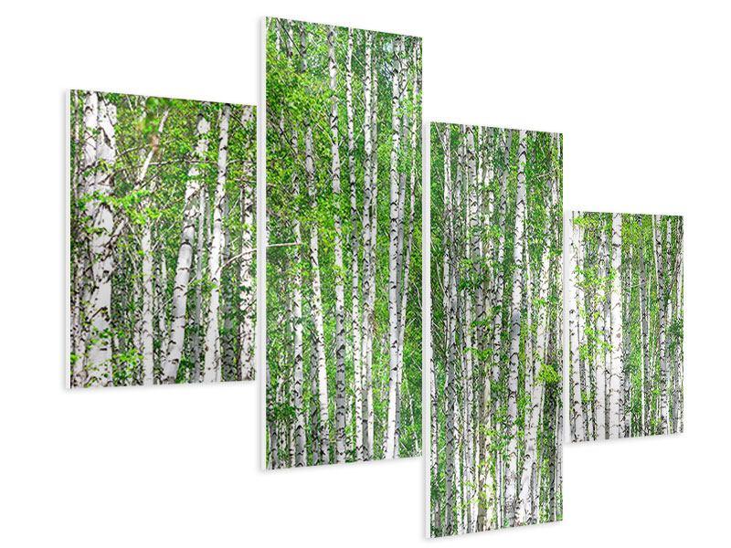 Hartschaumbild 4-teilig modern Der Birkenwald