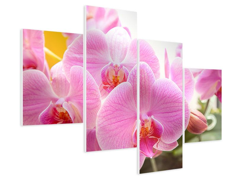 Hartschaumbild 4-teilig modern Königliche Orchideen