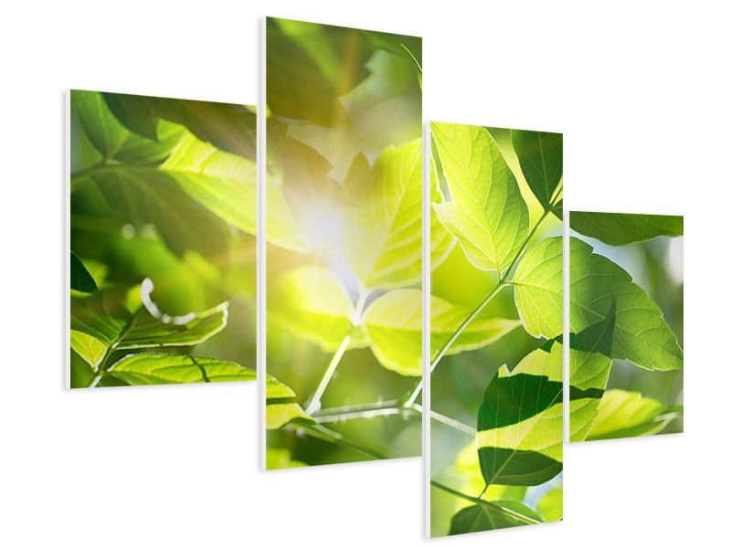 Hartschaumbild 4-teilig modern Es grünt so grün