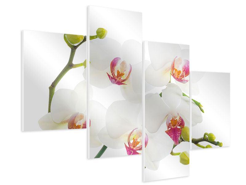 Hartschaumbild 4-teilig modern Orchideenliebe