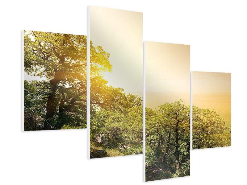 Hartschaumbild 4-teilig modern Sonnenuntergang in der Natur