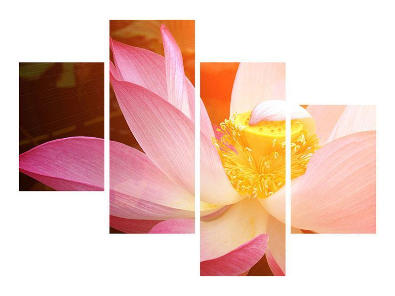 Hartschaumbild 4-teilig modern Close Up Lotus