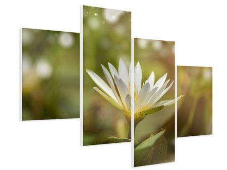 Hartschaumbild 4-teilig modern Lilien-Lichtspiel