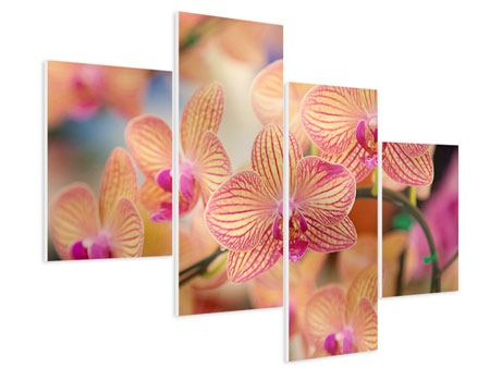 Hartschaumbild 4-teilig modern Exotische Orchideen