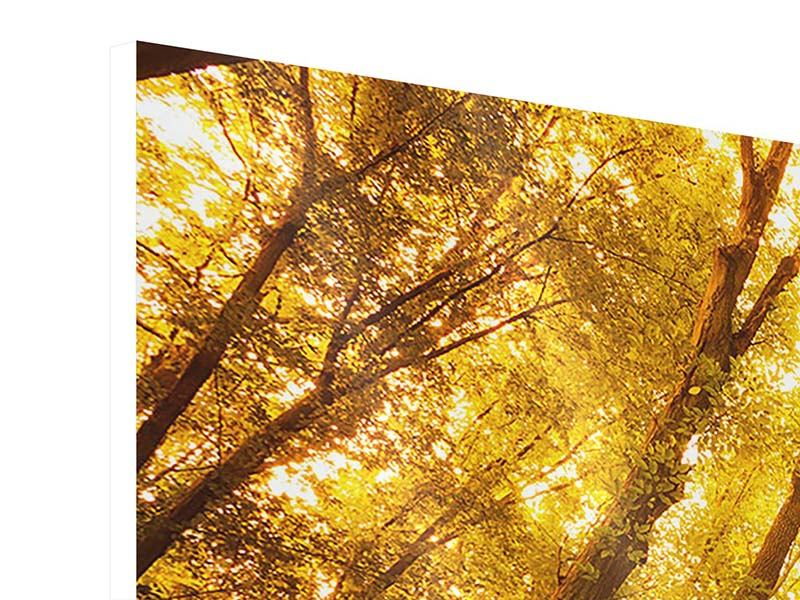 Hartschaumbild 4-teilig modern Herbstwald