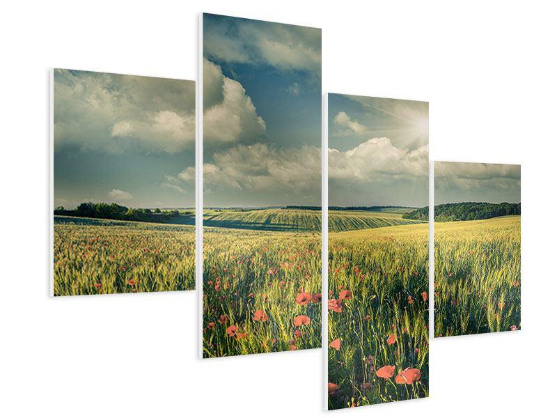 Hartschaumbild 4-teilig modern Der Mohn im Weizenfeld