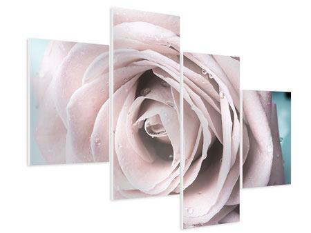 Hartschaumbild 4-teilig modern Pastellrose