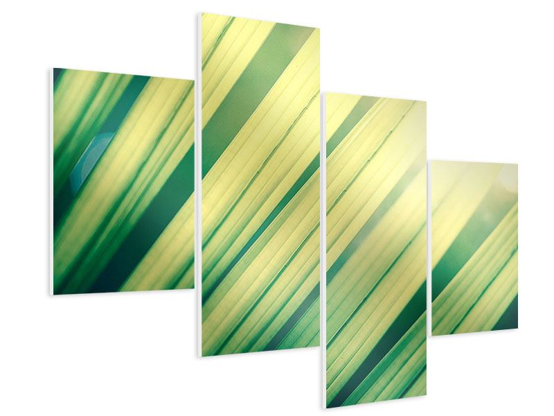 Hartschaumbild 4-teilig modern Beleuchtetes Palmblatt