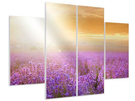 Hartschaumbild 4-teilig Sonnenuntergang beim Lavendelfeld