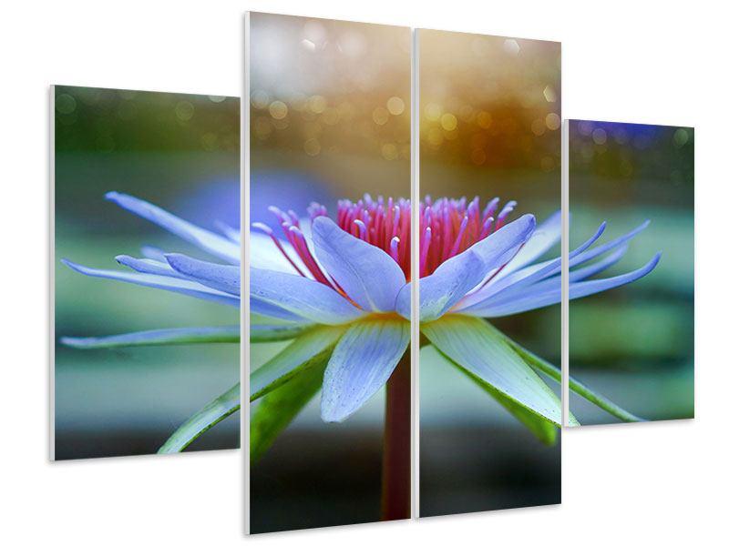 Hartschaumbild 4-teilig Pretty Lotus
