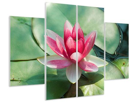 Hartschaumbild 4-teilig Der Frosch und das Lotusblatt