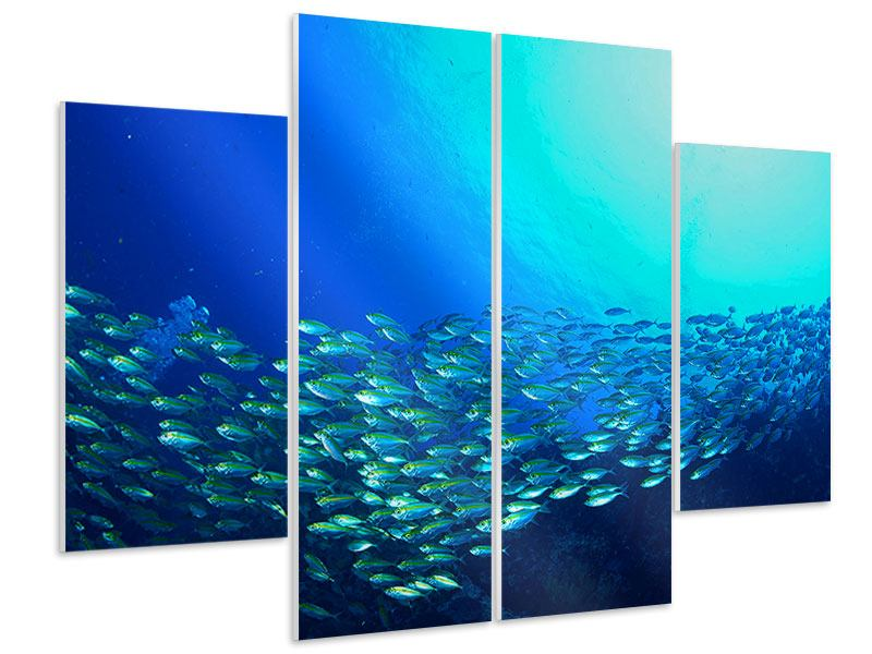Hartschaumbild 4-teilig Fischschwarm