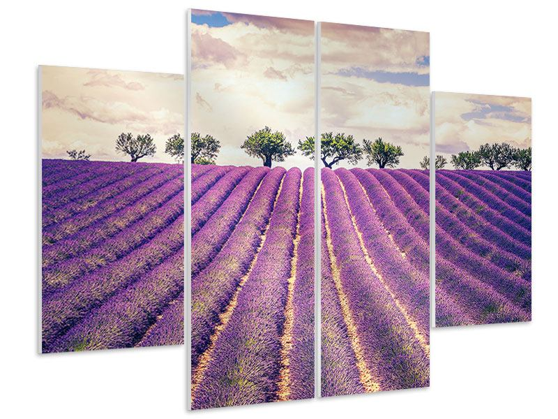 Hartschaumbild 4-teilig Das Lavendelfeld