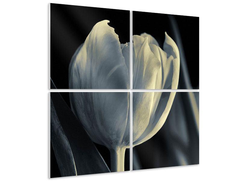 Hartschaumbild 4-teilig Schwarzweissfotografie XXL Tulpe