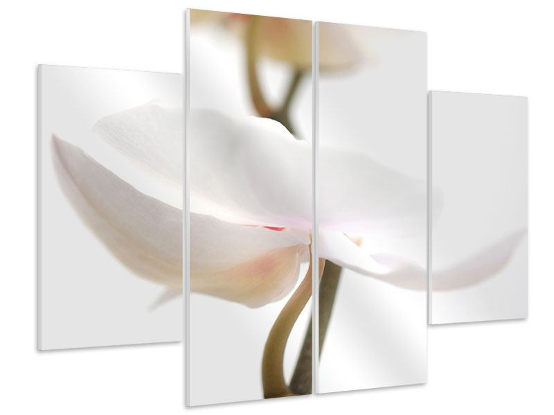 Hartschaumbild 4-teilig XXL Orchideenblüte