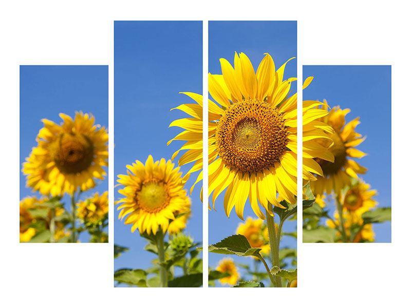 Hartschaumbild 4-teilig Himmlische Sonnenblumen