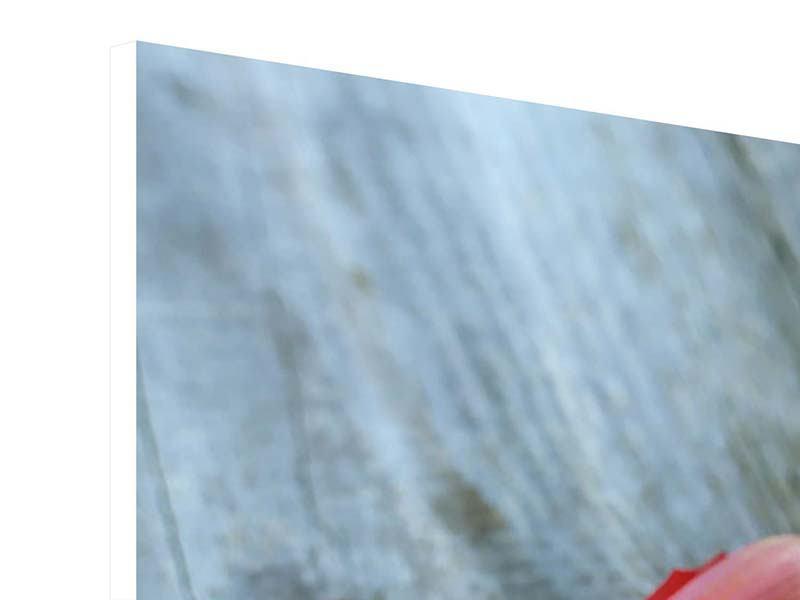 Hartschaumbild 4-teilig Der rote Tulpenstrauss