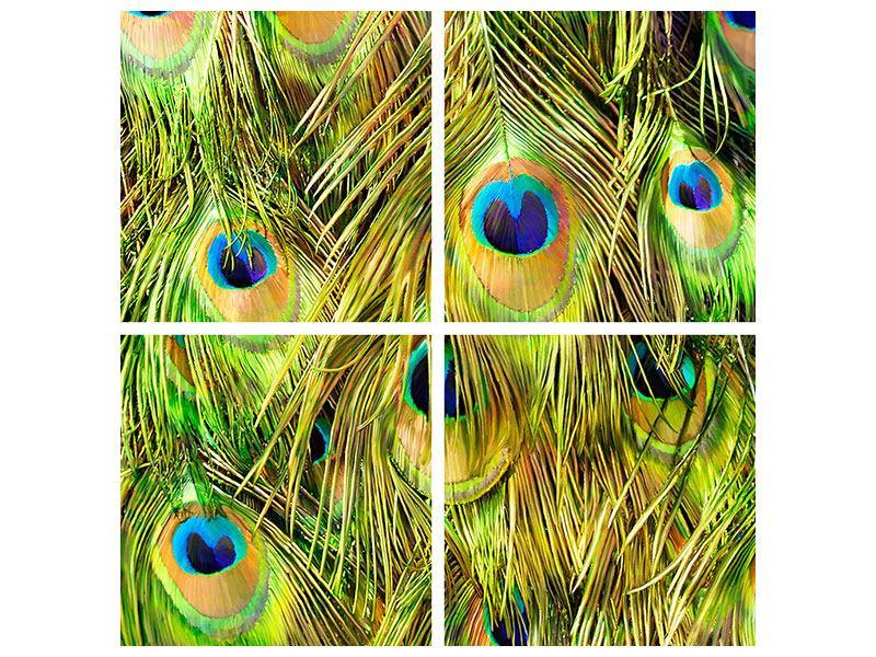 Hartschaumbild 4-teilig Das Pfauenkleid