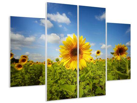 Hartschaumbild 4-teilig Sommer-Sonnenblumen