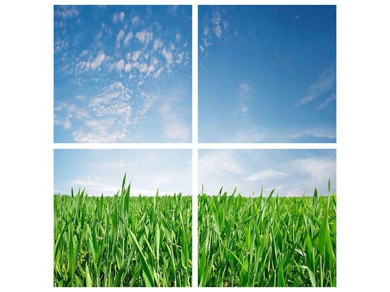 Hartschaumbild 4-teilig Das Gras