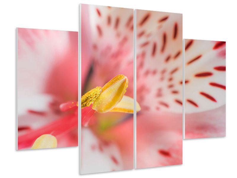 Hartschaumbild 4-teilig Der Lilienstempel