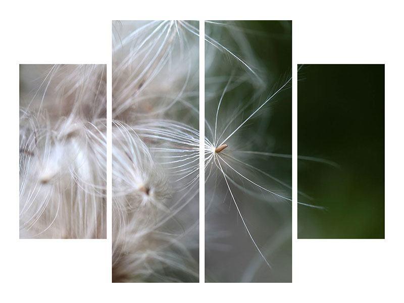 Hartschaumbild 4-teilig Close up Blütenfasern