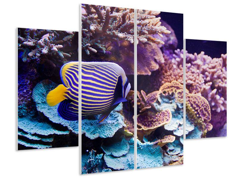 Hartschaumbild 4-teilig Faszination Unterwasser