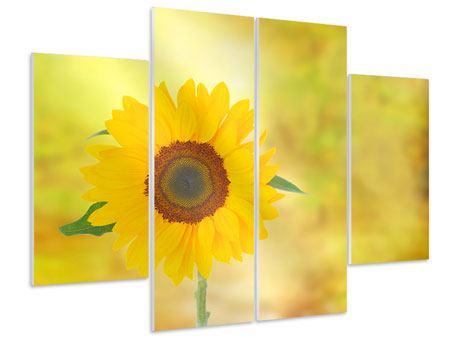 Hartschaumbild 4-teilig Die Sonnenblume