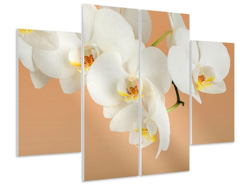 Hartschaumbild 4-teilig Weisse Orchideenblüten